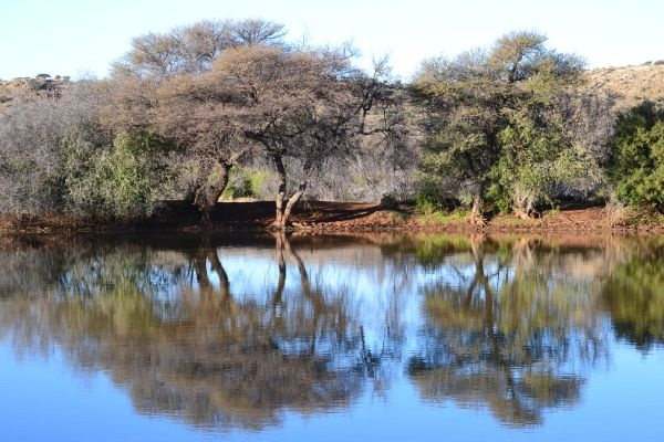Reflections at bird hide...Mokala national Park, South Africa