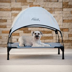 Ku0026H Pet Cot Canopy | Beds | PetSmart : dog cot with canopy - memphite.com