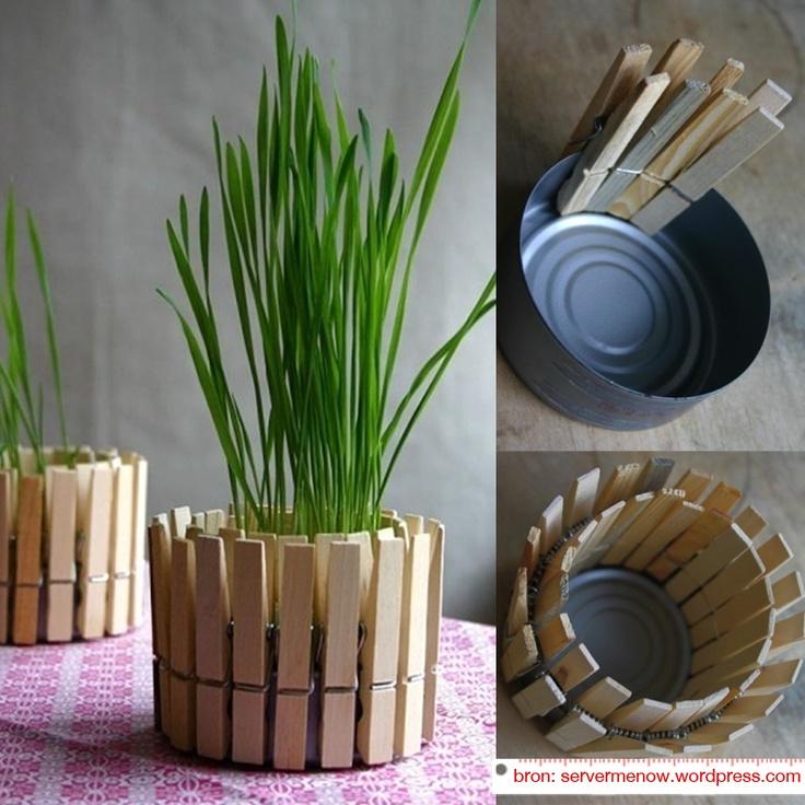 Praxis DIY   Voor elk plantje een nieuwe, passende plantenpot kopen is helemaal niet nodig. Met een blik en een paar wasknijpers maak je er namelijk gemakkelijk zelf één.