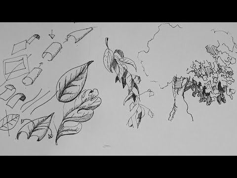 How to draw a leaf and leaves as a part of learning how to draw landscape, scenery and land features | This tutorial provides pen and ink drawing tips and te...