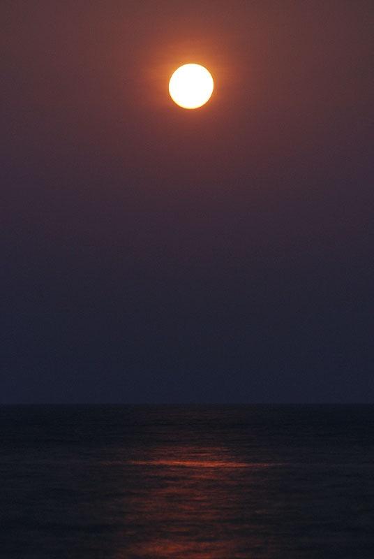徐々に輝きを増すお月様。いつもより三割ほど明るいそうです。