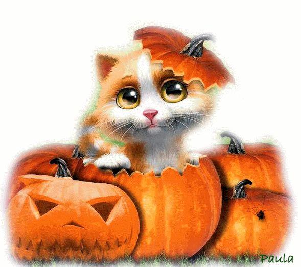 229 best HALLOWEEN/FALL images on Pinterest | Fall season ...