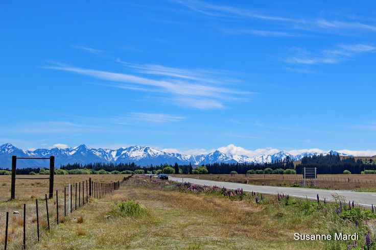Djuli's first view of the Southern Alps.