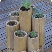 Pot naturel en bambou Idée déco à fabriquer - Loisirs créatifs