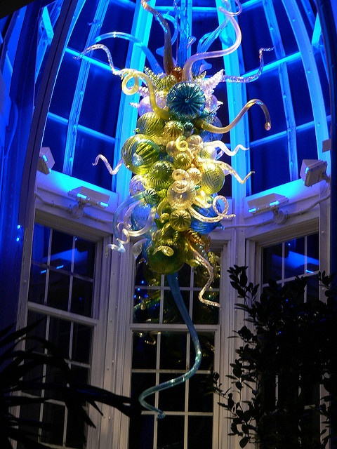 Chihuly Glass (chandelier at Franklin Park Conservatory in Columbus, OH, by Dale Chihuly)-- Loved touring the entire exhibit!