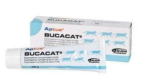 Bild på Aptus Bucacat Tandpasta 45 g