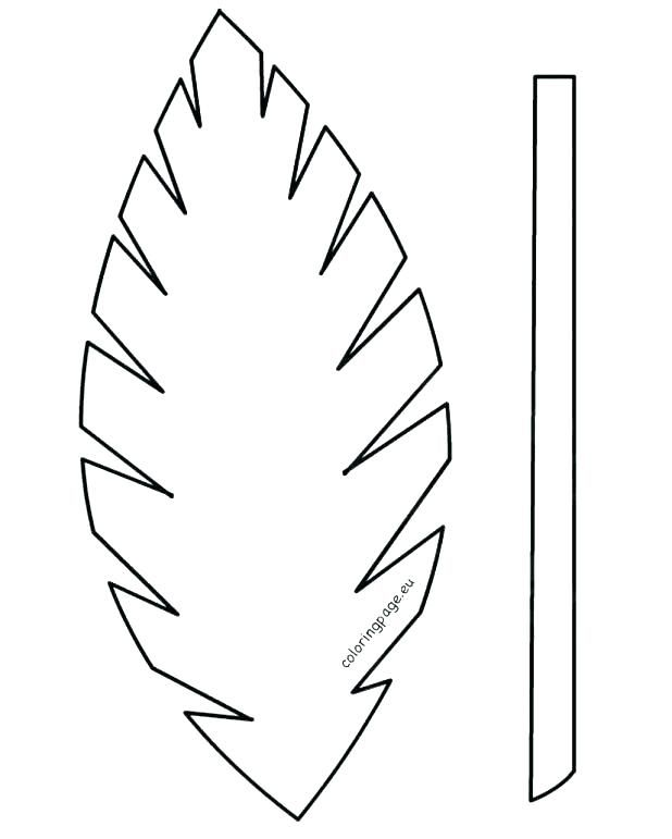 Printable Leaves Coloring Pages Palm Leaf Coloring Page Leaf