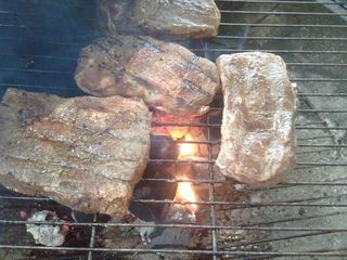 """(Or how to barbeque meat for the rest of us) To """"braai"""" or barbeque (Bar-B-Q) meat is a South African tradition. We usually do it once or twice a week,..."""
