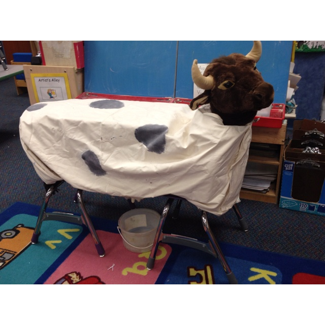 Milking a Cow in Kindergarten! As part of our Down on the farm Theme, I construct a cow for us to use to learn about cows and how to milk them. The utter is a medical glove with a pin hole in 3 fingers. My assistant found a riding cow at. Farm shop and I removed the pole. The body is a box. The tail is made of yarn that we braided :). The kids live to meet Bessie and learn how to milk her!