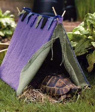 Knit a tent for your tortoise- from the book Pet Projects @Annie Compean Compean Compean Morton Hah!