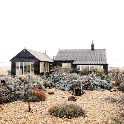 girlinthepark:  Joe Pickard |  Derek Jarman's Garden.