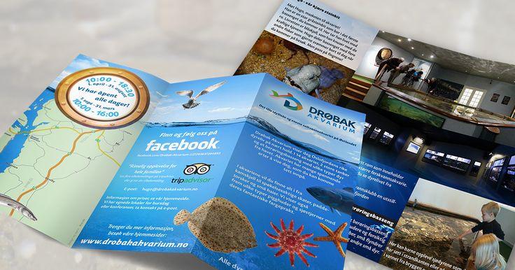 Tourist trifold brochure for a public saltwater aquarium