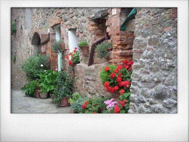 今天從Rigomagno明信片 #Rigomagno #Tuscany #Italia #Italy #Montepulciano⊙around