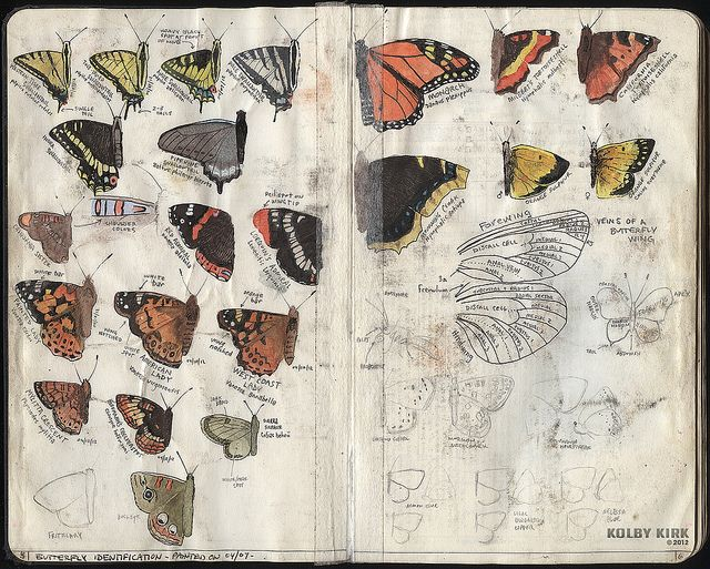 A nature journal. Kolby Kirk's hiking journal, via retro traveler, Flickr.
