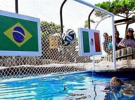 BetCreta: Ήττα της Βραζιλίας από το Μεξικό !!