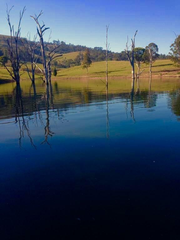 Aussie Bass water