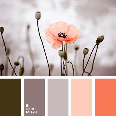 color coral, color gris pardusco, color rojo amapola, colores pastel, elección del color, elección del color para una boda, esquema de colores cálidos, matices de color marrón grisáceo, paleta de colores para una boda de otoño, tonos pastel.