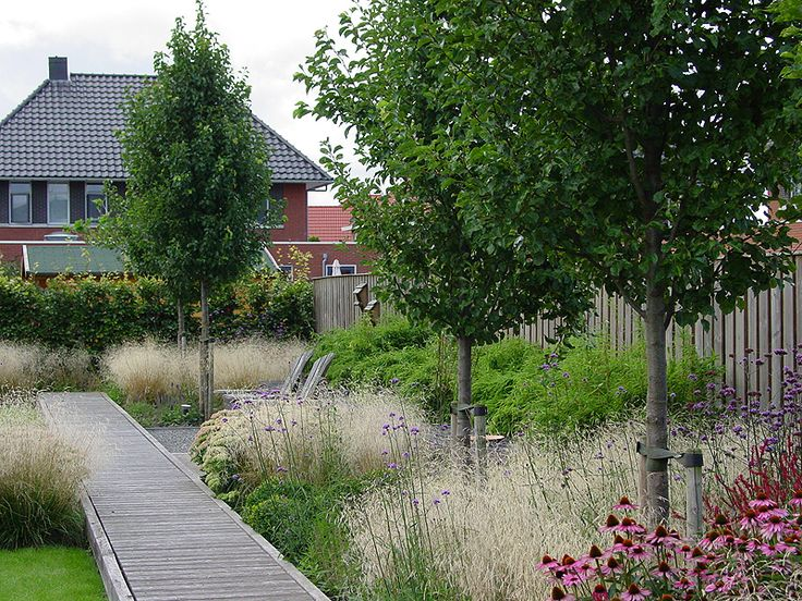 Blocks of deschampsia and fargesia with a decked path. Pinned to Garden Design - Planting Schemes by Darin Bradbury.