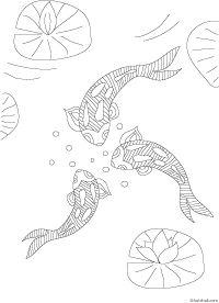 coloring koi fishes in a pond for koi nobori