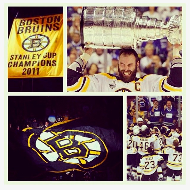 156 Best Boston Bruins Images On Pinterest