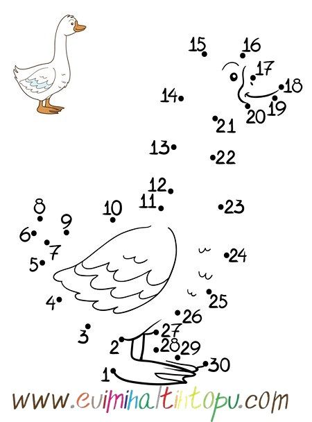 Nokta Birleştirme Boyama Oyunları 2 Materials8 Learn