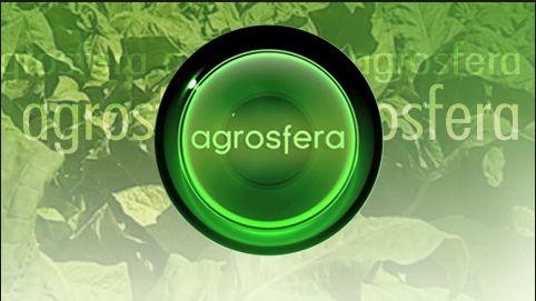 ¡No te pierdas este sábado LA ABUELA CARMEN! En el programa @agrosfera_tve de @la2_tve a las 9.45