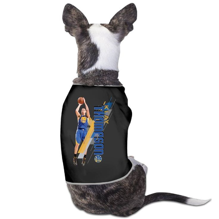 Golden State Klay Thompson Warriors Dog Shirt ** Remarkable product available now. : Dog Cold Weather Coats