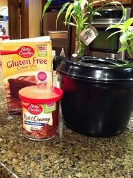 "Pampered Chef 8 minute Lava Cake in the Rice Cooker   Ingredients as follows:   1 Box of chocolate cake mix (mix according to directions)  1 can of Chocolate frosting.   Stir together mixture into the Pampered Chef Rice Cooker.  Scoop canned frosting over different areas of the batter ~ cook approx 8 mins in the microwave! Pop the top & let sit for 5 mins to cool down.  Then invert onto a large platter for the ""lava"" to flow.   Serve warm with a scoop of ice cream!"