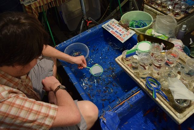 Think you can scoop a fish using a net made out of tissue paper? I bet you can't! - one of the most popular folk games at a Taiwanese night market.