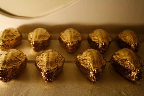 Gold possum skulls cast in plaster by #scadalum Adam Winnie #sculpture #art #scad #glennewallace #design #collection