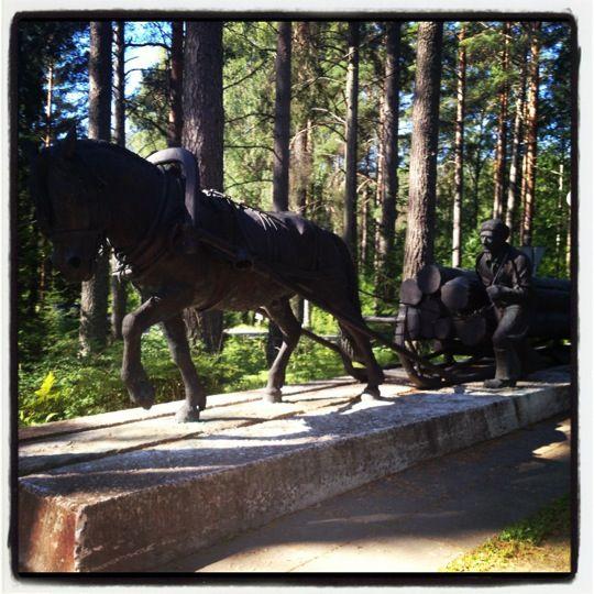 Lusto - Suomen Metsämuseo The Finnish Forest Museum called Lusto