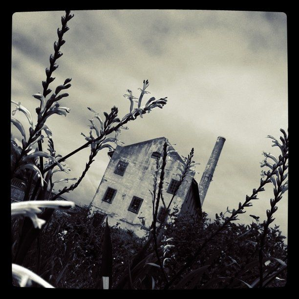 The Instacanvas gallery for stonin. Buy Instagram art from stonin and photography.