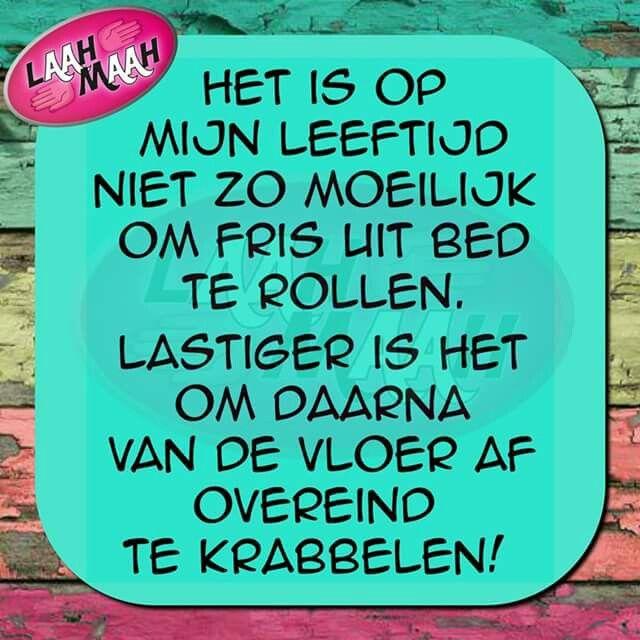 Citaten Nederlands Grappig : Beste verjaardag humor citaten op pinterest