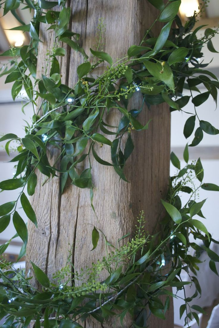 Foliage beam garlanding with fairy lights at Cain Manor ...