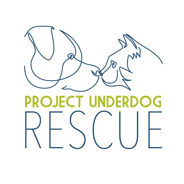 Project Underdog Rescue Inc. - Dog Lovers Show Melbourne