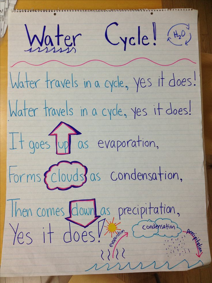 Water cycle song inspired from Pinterest! Sung to the tune of She'll Be Coming Around the Mountain