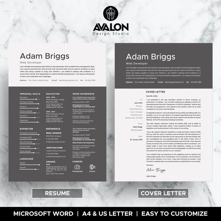 Professional experience resume template for microsoft word