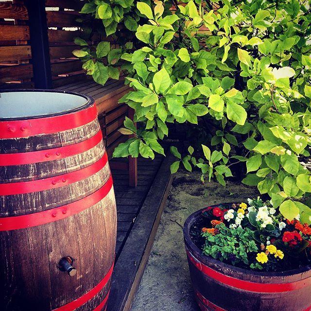 #szekszard #heimann #wineglasscommunication #wine_pr #workthings #winetrip