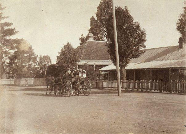 Postcard view of Bells Line of Road at Kurrajong Heights showing 'Lochiel' on the left and 'Ivy Lodge' on the right. The latter was built by Joseph Douglass about 1825. Both buildings are still standing.
