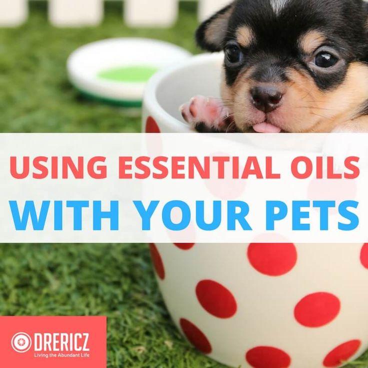 884 Best Essential Oils God S Medicine Images On