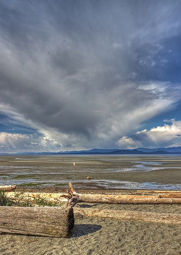 Low Tide On Parksville Beach