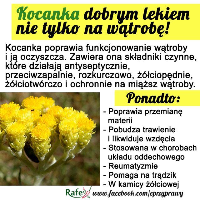 koccccc.png (640×641)