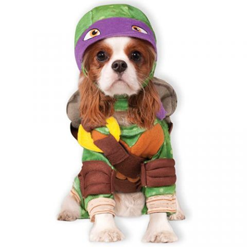 2020 Halloween Costumes Donatello Rubies TMNT Donatello Dog Costume in 2020 | Pet halloween costumes
