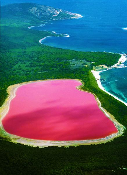 Lake Hiller, Western Australia. This saltwater lake is PINK! @Jessica James this is what I was talking about