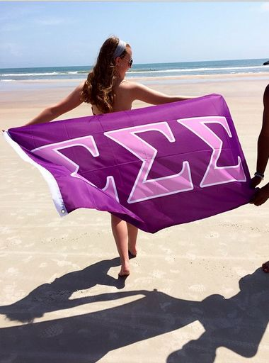 President of Sigma Sigma Sigma • Theta Alpha • High Point University with a sweet Tri Sigma flag!submitted by: voice-of-treasonn