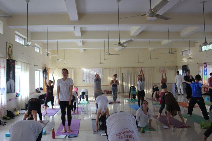 https://flic.kr/p/UgVBXa | 200 Hour Yoga Teacher Training Rishikesh | Yoga Teacher Training India