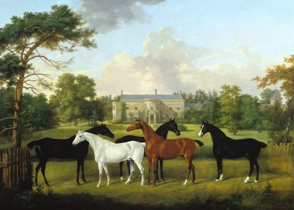 Image: Frederick W. Keyl - Five racehorses in front of an English country house.