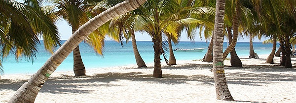 Ilha Saona, Punta Cana, República Dominicana