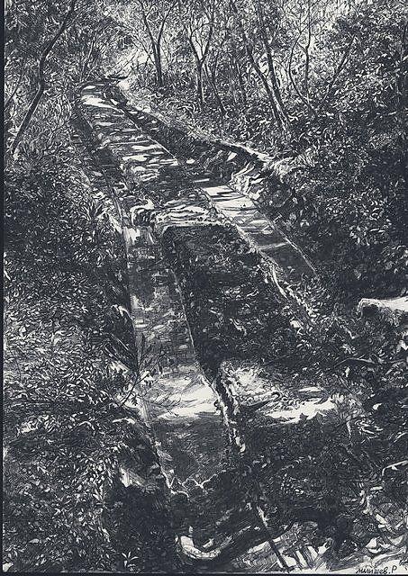 Дорога в лесу - Изобразительное искусство - Карандаш, ручка, фломастер.