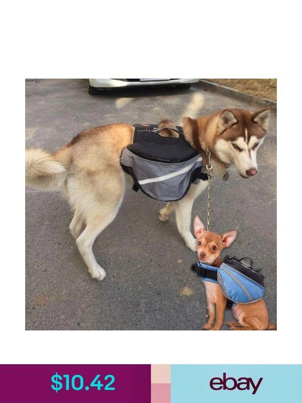 Pet Carriers Ebay Pet Supplies Pet Carriers Your Pet Pet Bag